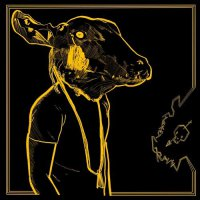 Shakey Graves -Roll The Bones X