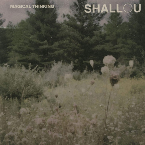 Shallou - Magical Thinking