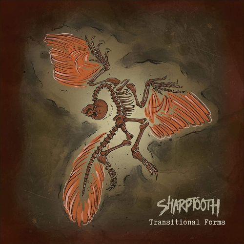 Sharptooth -Transitional Forms