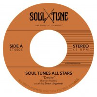 Soul Tune Allstars -Desire / Messin Around