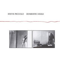 Steve Piccolo -Domestic Exile