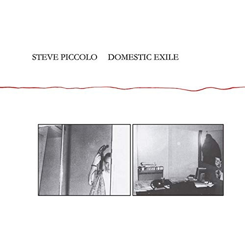 Steve Piccolo - Domestic Exile