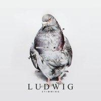 Stimming -Ludwig