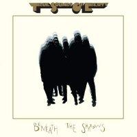 T.S.O.L. - Beneath The Shadows