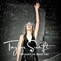 Taylor Swift - Should've Said No