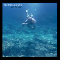 Tenderlonious -On Flute