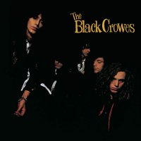 The Black Crowes -Shake Your Money Maker