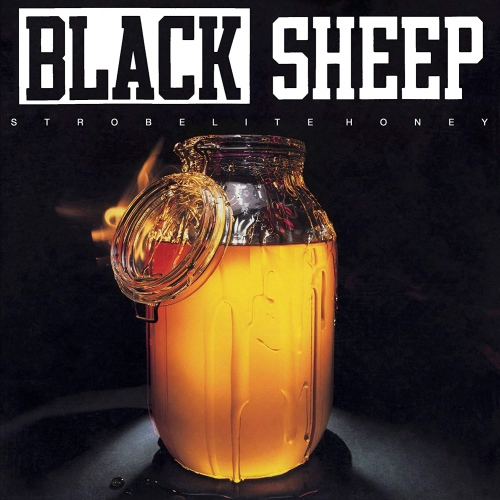 The Black Sheep -Strobelite Honey