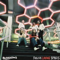 The Blossoms - Foolish Loving Spaces
