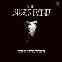 The Budos Band - Long In The Tooth