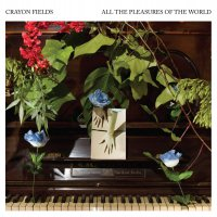 The Crayon Fields - All The Pleasures Of The World