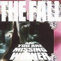 The Fall -Are You Are Missing Winner