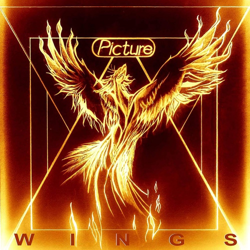 The Picture - Wings