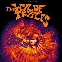 The Wylde Tryfles -Fuzzed & Confused