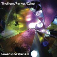 Thollem  /  Parker  /  Cline - Gowanus Sessions II