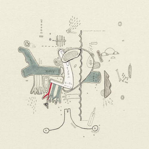 Tiny Changes: A Celebration Of Frightened Rabbit's 'the Midnight Organ Fight' - Tiny Changes: A Celebration Of Frightened Rabbit's 'the Midnight Organ Fight'