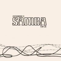 Tom Ze -Estudando O Samba