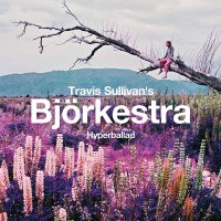 Travis Sullivan's Bjorkestra -Hyperballad / Venus As A Boy