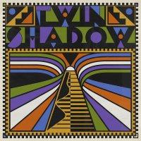Twin Shadow -Twin Shadow