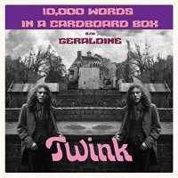 Twink - 10,000 Words In A Cardboard Box