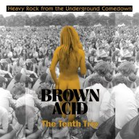 Various Artists - Brown Acid - The Tenth Trip