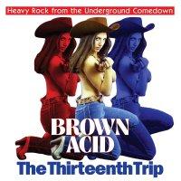 Various Artists - Brown Acid - The Thirteenth Trip