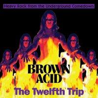 Various Artists -Brown Acid - The Twelfth Trip