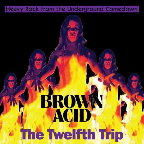 Various Artists - Brown Acid - The Twelfth Trip