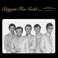 Various Artists -Diggin' For Gold Vol. 11