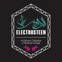 Various Artists - Electrosteen