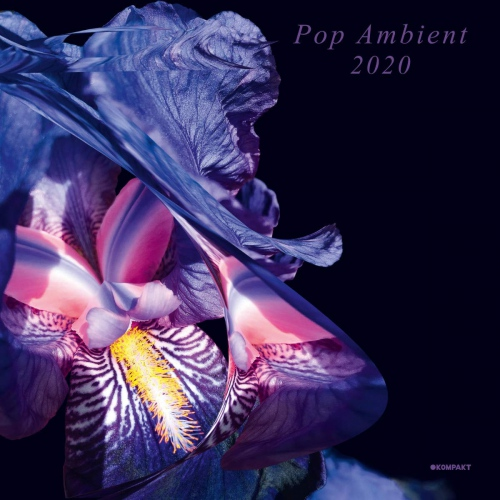 Various Artists - Pop Ambient 2020