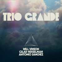 Vinson  / Antonio Sanchez / Gilad Hekselman -Trio Grande