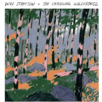 Will Stratton -The Changing Wilderness