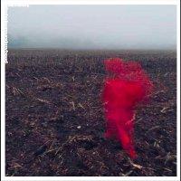 Will Varley - The Hole Around My Head