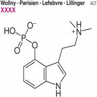 Wollny  /  Lillinger -Xxxx