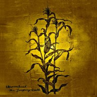Woven Hand - The Laughing Stalk