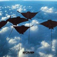 Zombi -Liquid Crystal